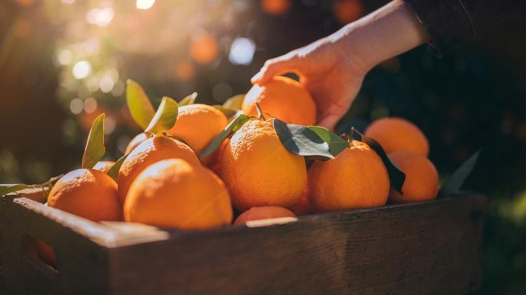 Muito além do reforço contra gripe: 12 benefícios da laranja para a saúde…